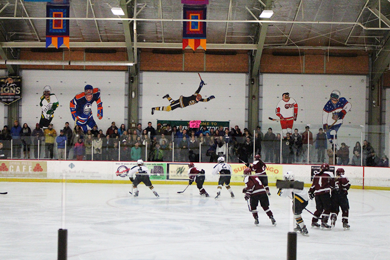 goons hockey rink