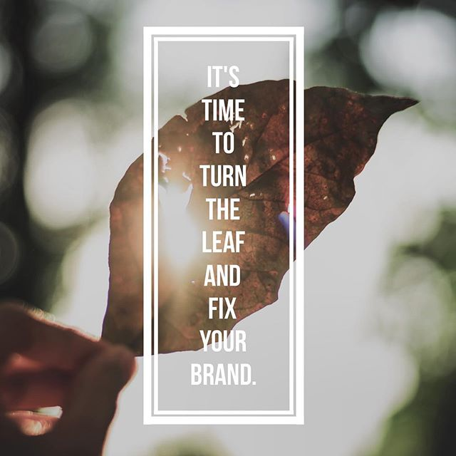 It's time turn the leaf and fix your brand. See how we can help. clearspacemedia.com - - - #smallbusiness #startups #sales #entrepreneurs #ecommerce #marketing #branding