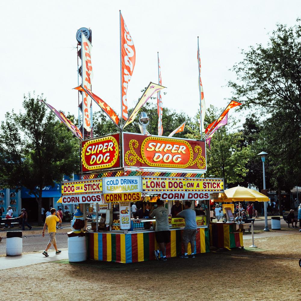 2015 State Fair-4.jpg