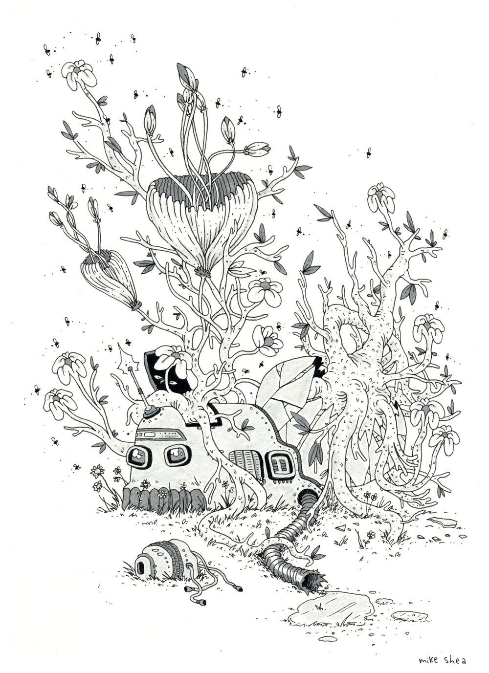 plant prize drawing.jpeg
