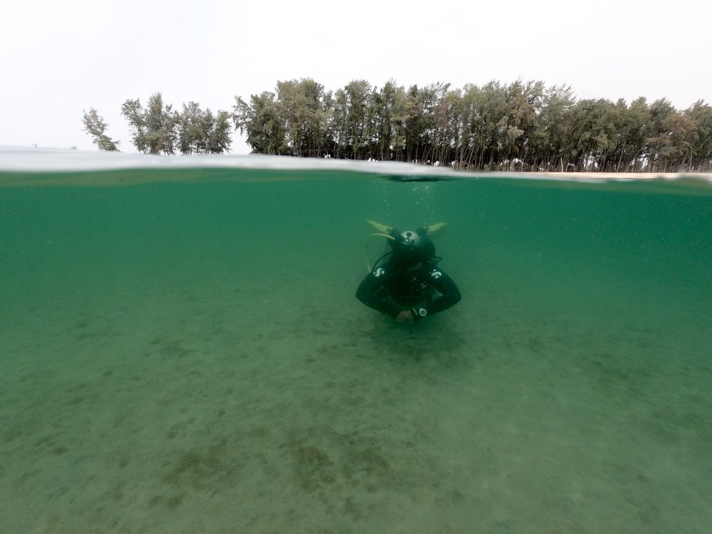 scuba-dive - 2 (1).jpg