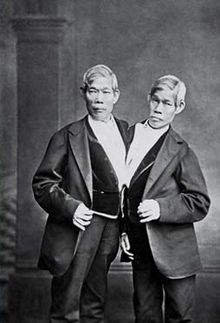 and even still, they could have developed differing perceptions... thus blowing my hypothesis | chang and eng bunker. photo credit: wikicommons