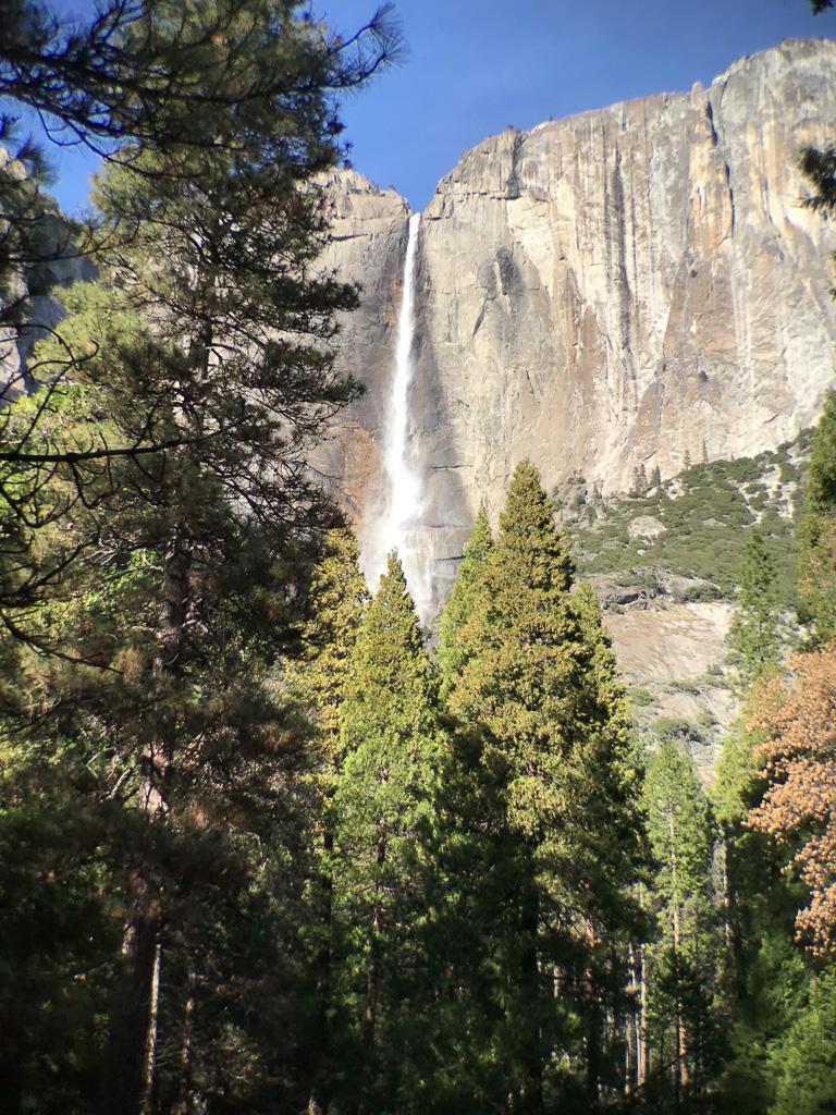 View of Yosemite Falls.
