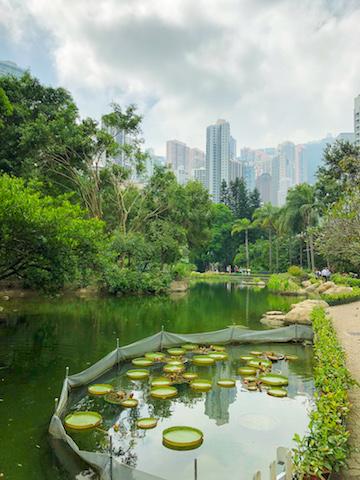 Hong Kong Park.