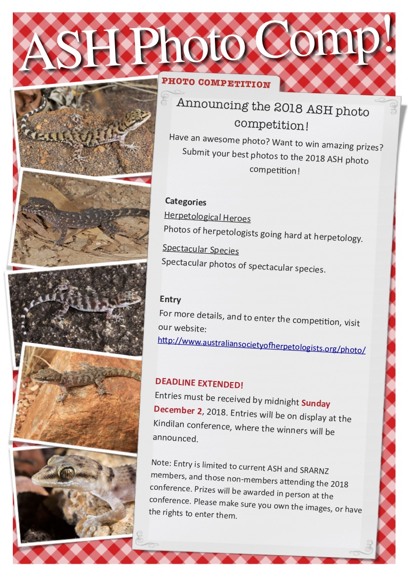 ASH photo comp flyer 2018b.jpg