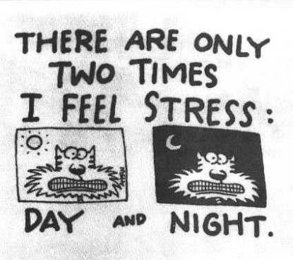 stress2.jpg