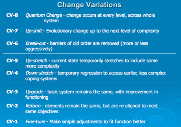 Table 6:  Spiral Dynamics Change Variations  (Beck & Cowan 1996)