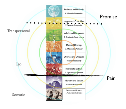 Figure 32:  The Pain and the Promise through the Spiral Dynamics lens