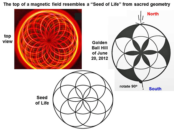 Figure 15: Magnetic fields and the Seed of Life (Anastazi 2012)