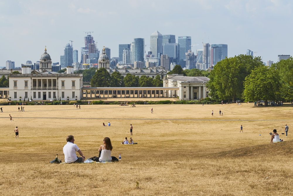 Greenwich Park in the 2018 heatwave
