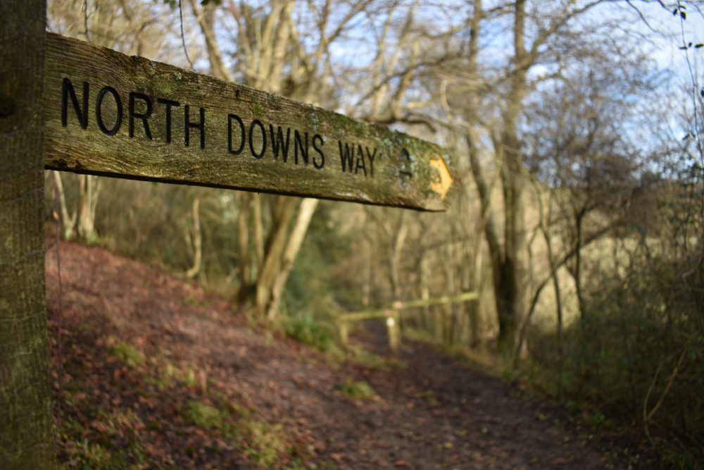 An essential British journey: the North Downs Way  (Rich247/Shutterstock)