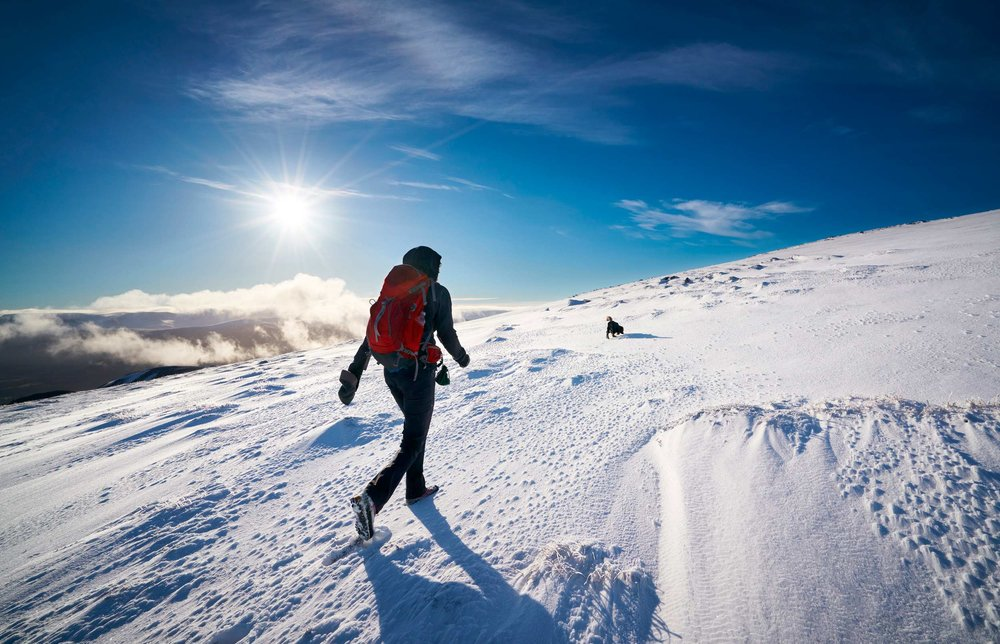 Walkies on Geal-charn Mor, Cairngorms National Park, Scotland  (Duncan Andison/Shutterstock)