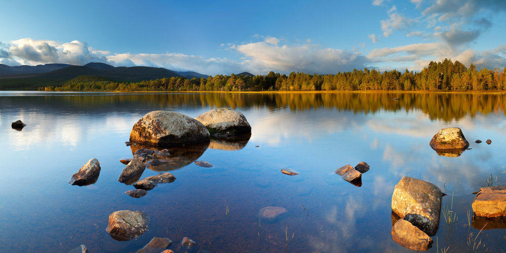 Loch Morlich, in the Cairngorms, Scotland  (Sara Winter/Shutterstock)