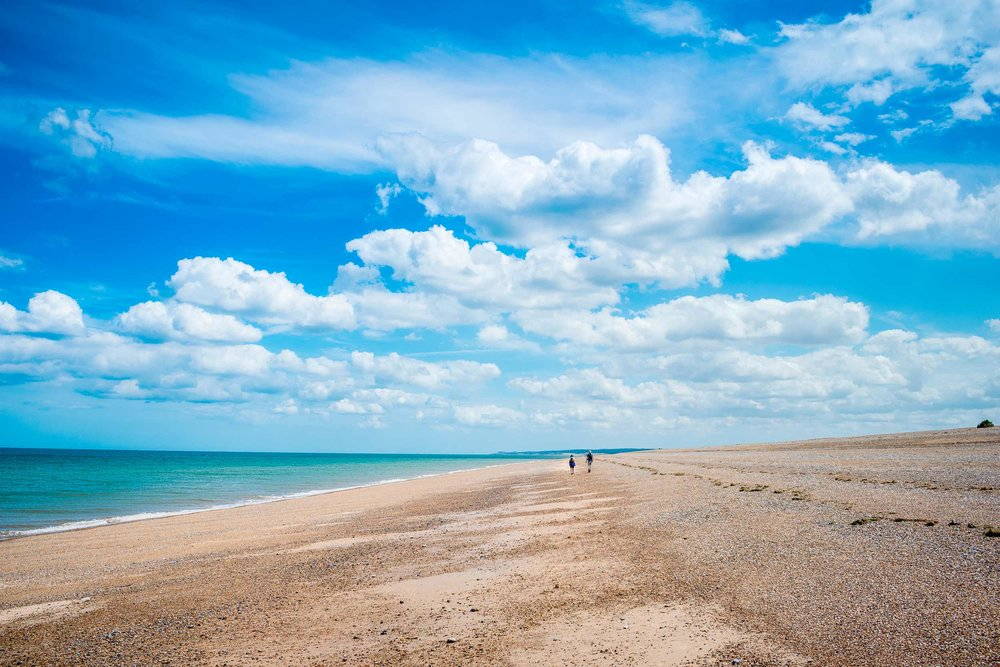 Blakeney Point, North Norfolk Coast  (Jan Duplnszki/Shutterstock)