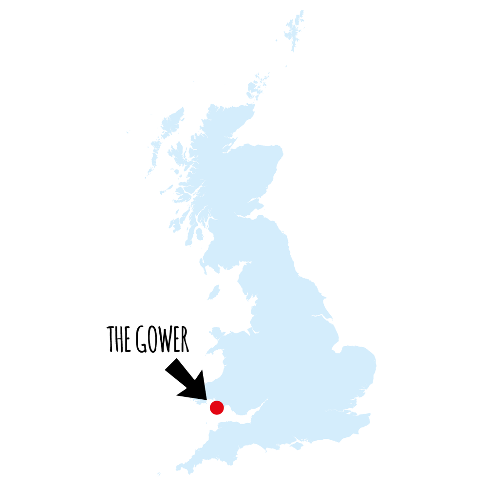the-gower-map.png