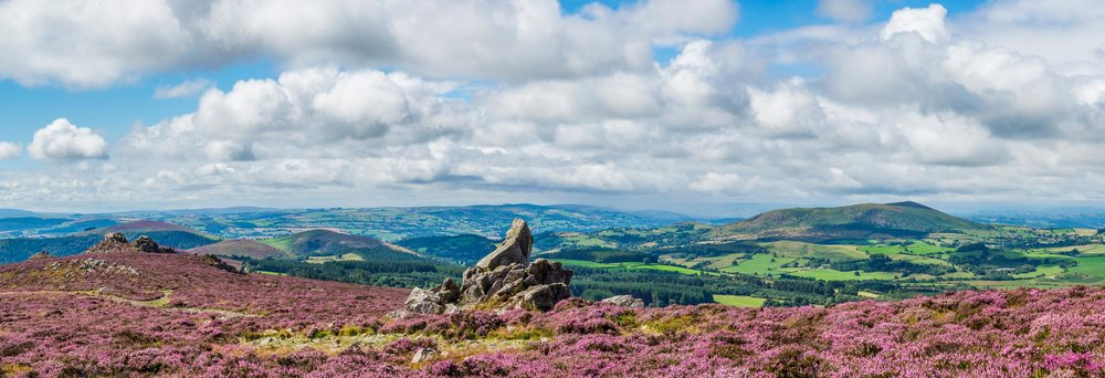 View from Stiperstones to Corndon Hill, in the Shropshire Hills AONB  (mfarr/Shutterstock)