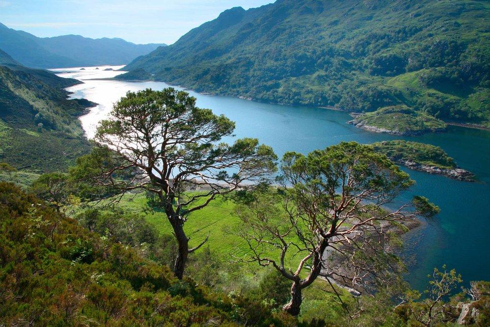 Loch Hourn,Knoydart, Scotland  (N Mrtgh/Shutterstock)
