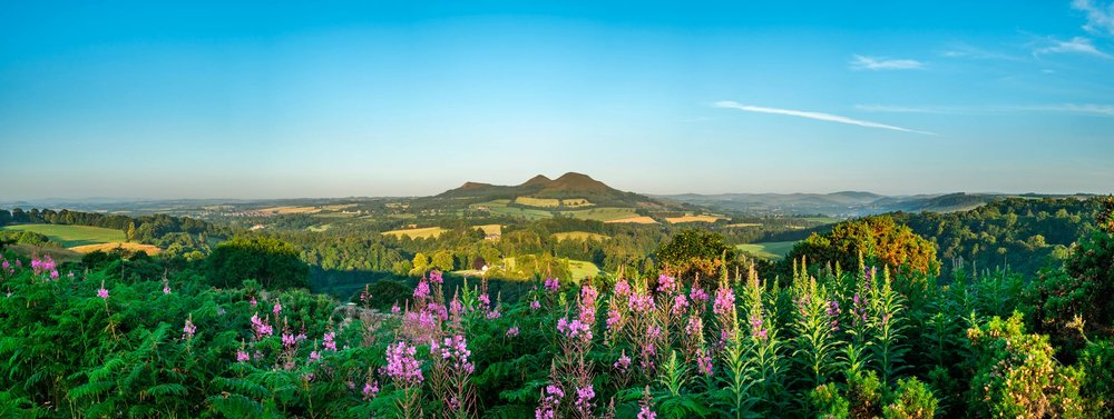 Scott's View to the Eildon Hills, Scottish Borders  (Shutterstock)