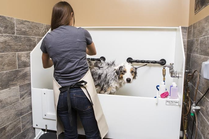 SQUEAKY CLEAN No more cold, outdoor baths or messy indoor bathing. Stop by Happy Hound and enjoy our private, self-serve wash stalls where we provide everything you need to clean your pup.