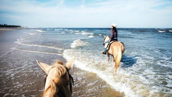 kelly-seahorse-ranch.jpg