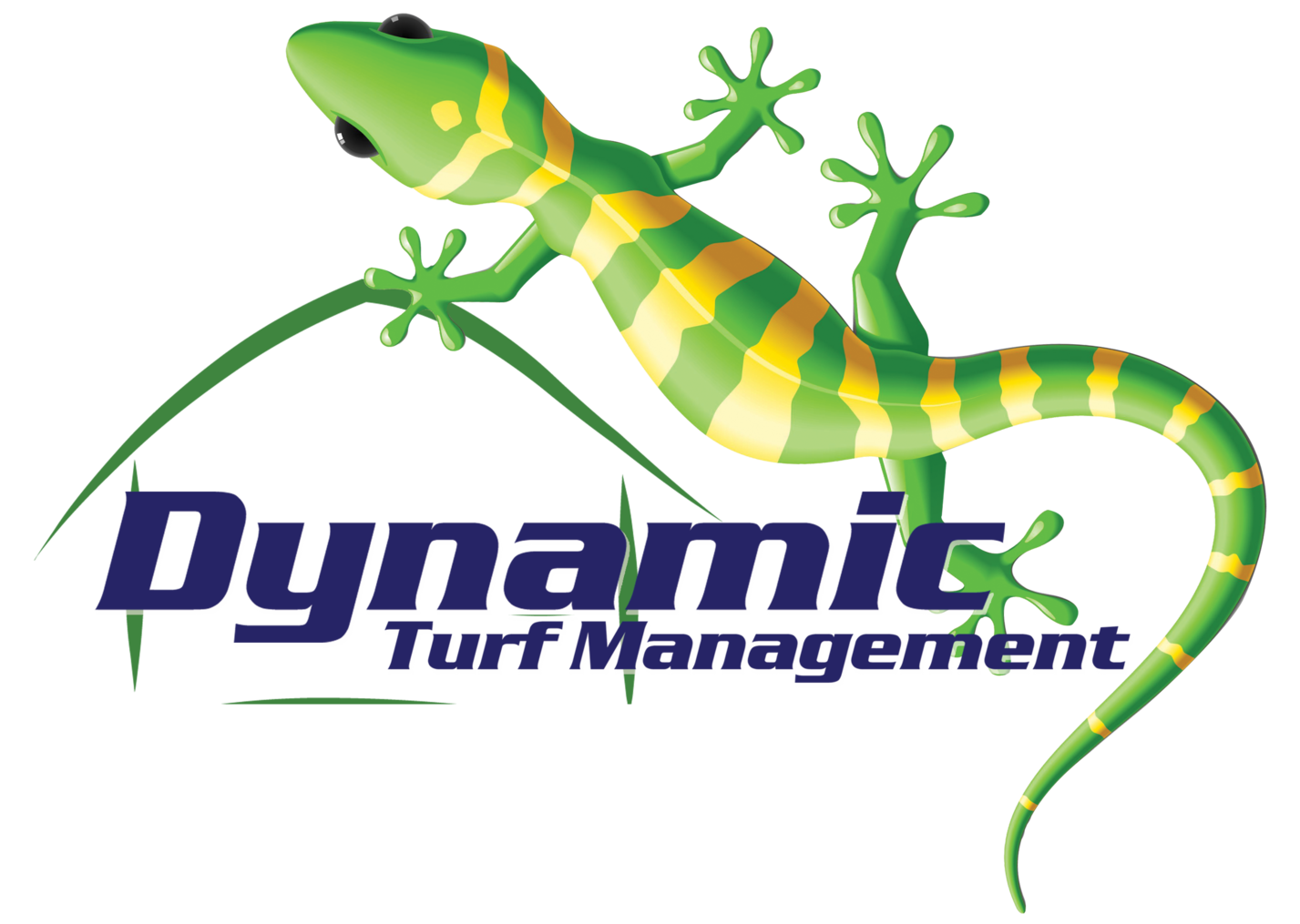 Dynamic Turf Management