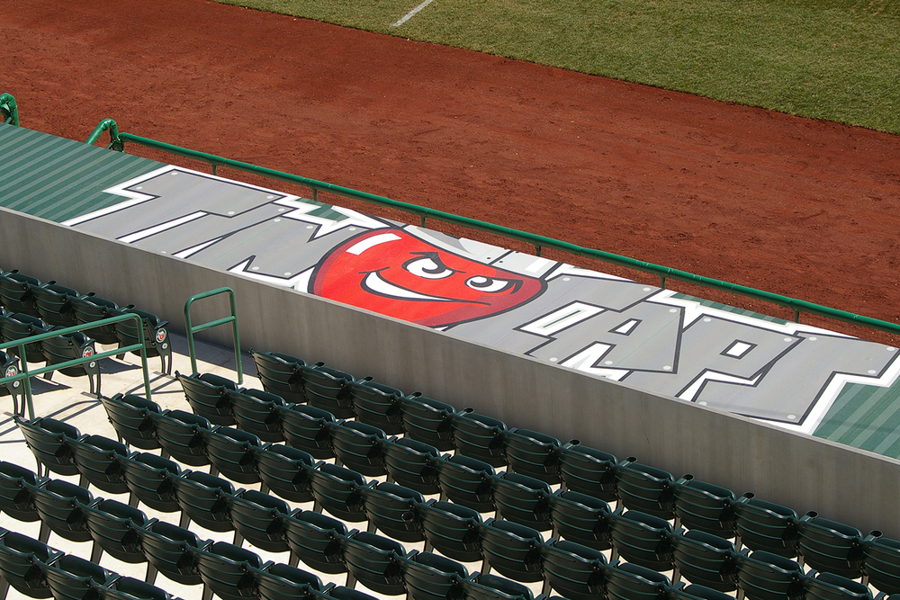 Parkview Dugout Graphics.JPG