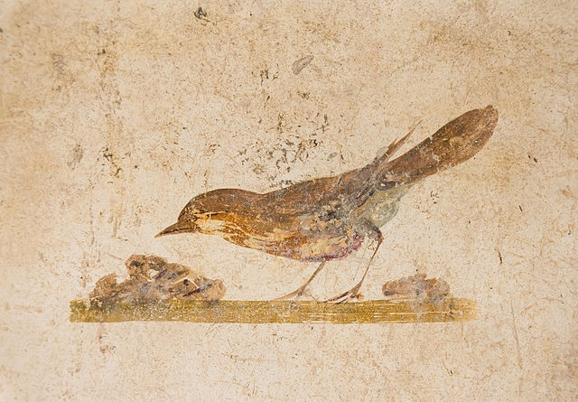 Ancient Roman fresco of a bird from the Villa of Poppaea, Oplontis, Italy, ca. 70 CE ( Wikimedia Commons ).