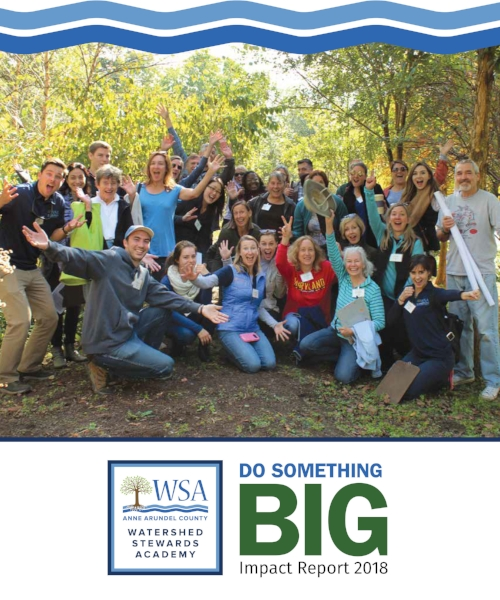 Final WSA Do Something Big Report Web image.jpg