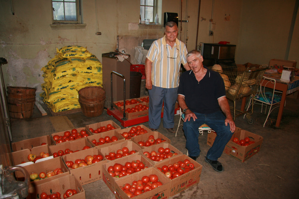 anthonyvorwerk_tomatoes.jpg