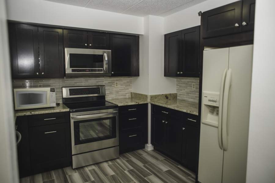 Kitchen renovation Euro Design Remodel remodeler with 20 years