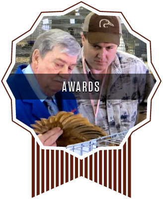 Whisky Gulch New Hamps Poultry Show Awards