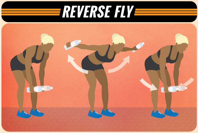reverse-fly.png
