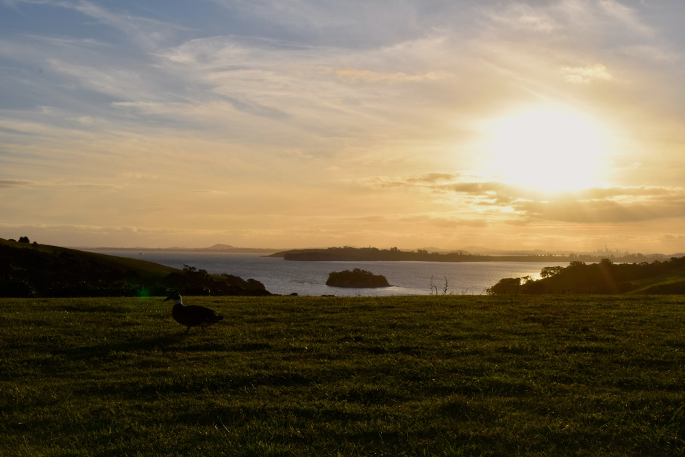 enjoyed Cable Bay so much we stayed until sunset