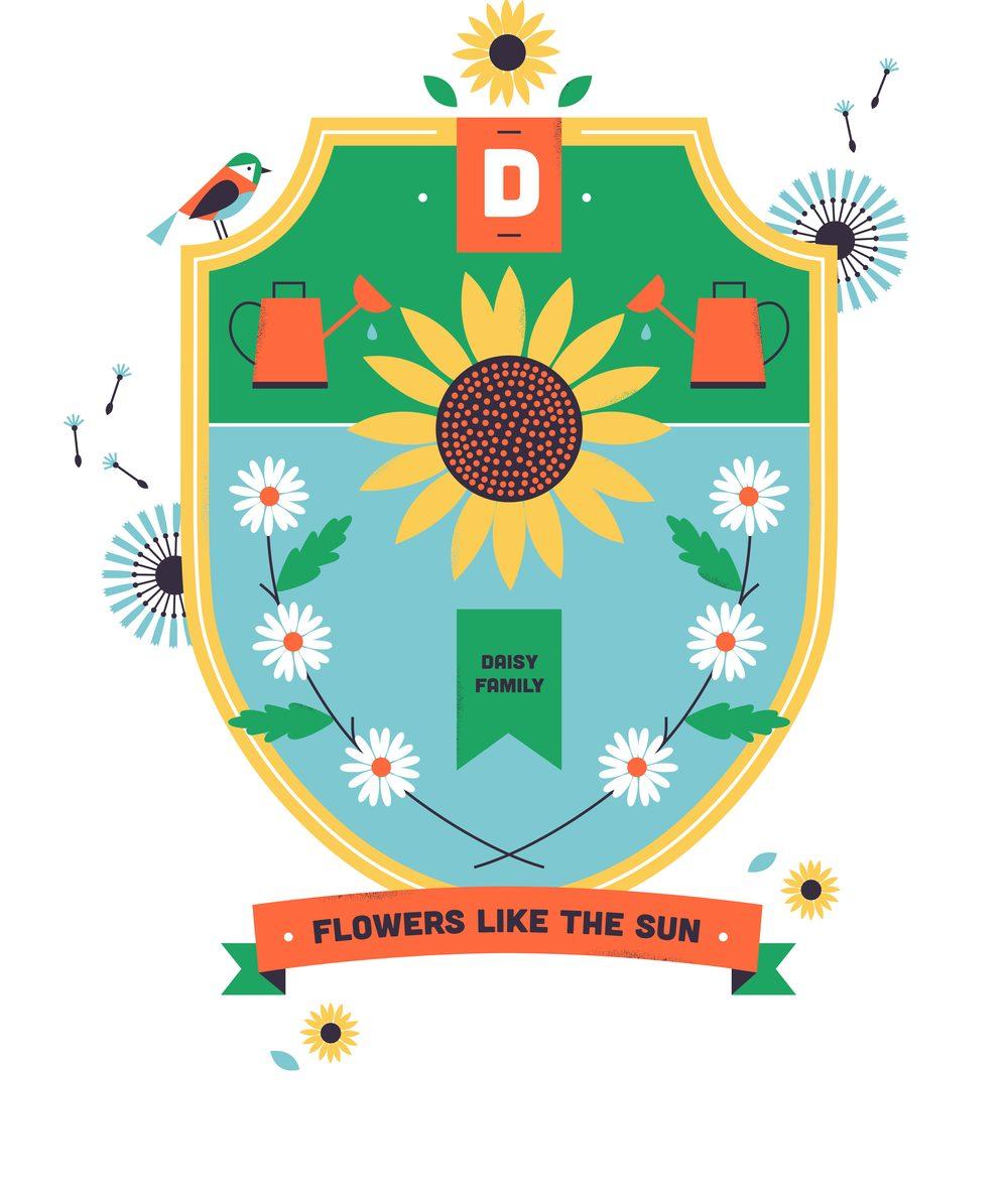 hannah+holly-illustration-cambridgeuniversitybotanicgarden-plantfamilies-crests-badges-daisy.jpg