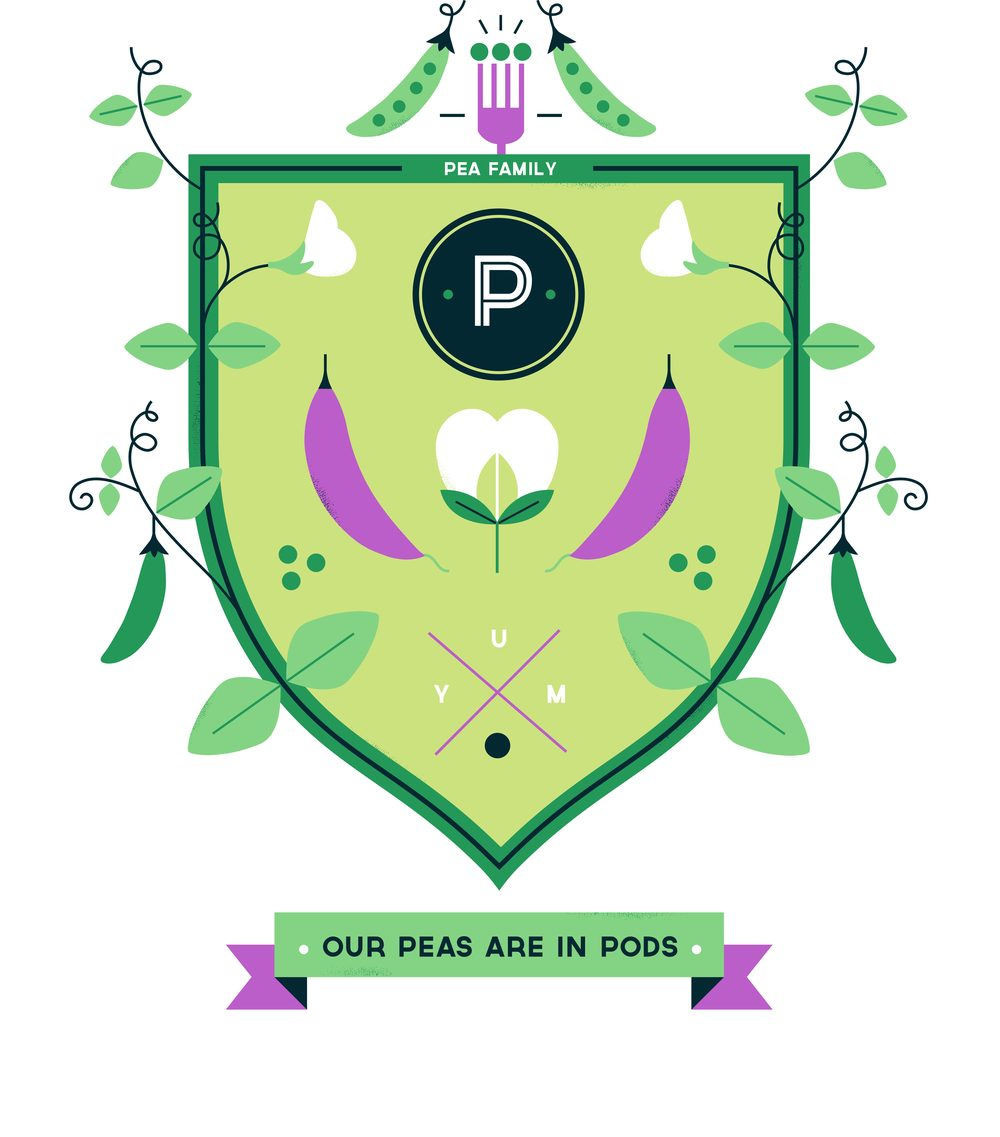 hannah+holly-illustration-cambridgeuniversitybotanicgarden-plantfamilies-crests-badges-pea.jpg