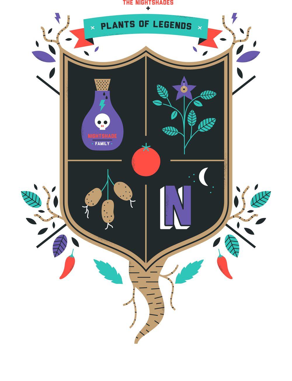 hannah+holly-illustration-cambridgeuniversitybotanicgarden-plantfamilies-crests-badges-nightshades.jpg