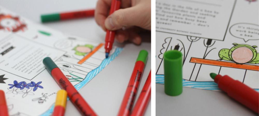 hannah+holly-illustration-theweirdandwonderfulworldofplants-cambridgeuniversitybotanicgarden-summer-trails-plants-facts-guides-children-activities-colour-in-cover.jpg