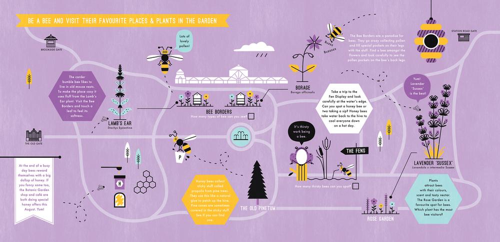 hannah+holly-illustration-theweirdandwonderfulworldofplants-cambridgeuniversitybotanicgarden-summer-trails-plants-facts-guides-bee-map.jpg