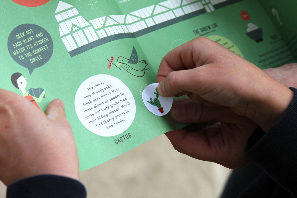 hannah+holly-illustration-theweirdandwonderfulworldofplants-cambridgeuniversitybotanicgarden-summer-trails-plants-facts-guides-children-activities-stickers.jpg