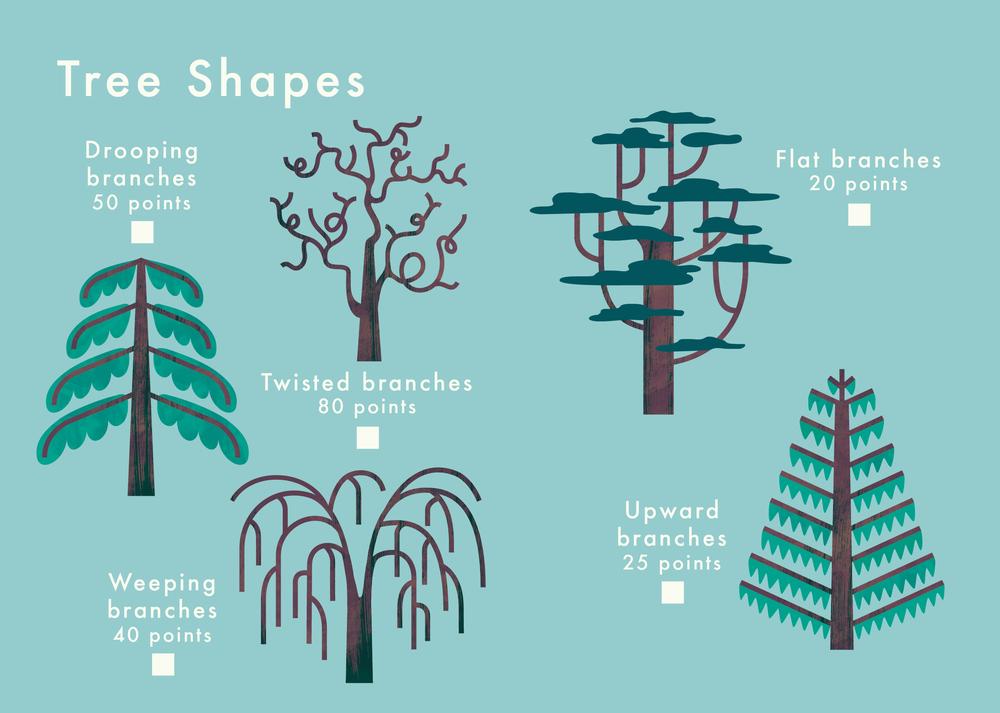 know+tell-find me 2 plant spotting guide-illustration-education-design-08-03.jpg