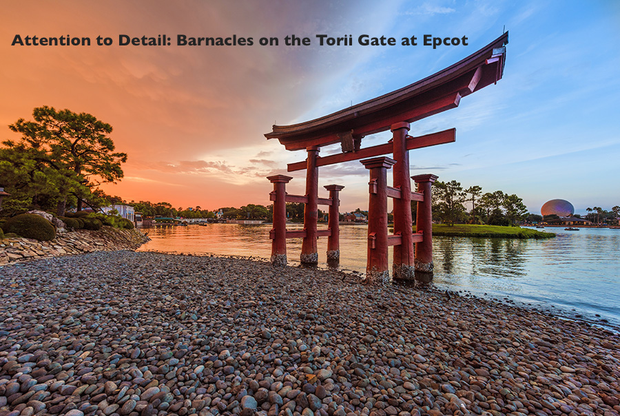 Torii Gate in Epcot's Japan Pavilion