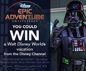 Enter to win a night in the Cinderella Castle Suite at the Walt Disney World Resort