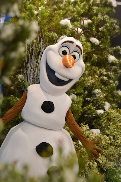 KRISTOFF & OLAF TO HOST FROZEN GAMES AT DISNEY'S BLIZZARD BEACH WATER PARK