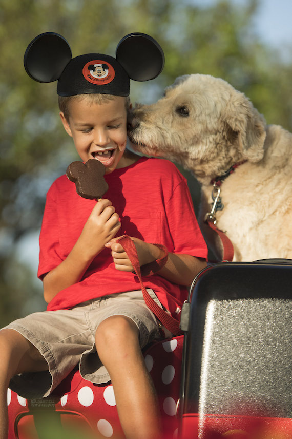 dogs_walt_disney_world