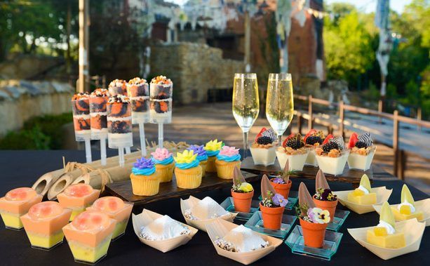 VIP Dessert Party at Disney's Animal Kingdom Park