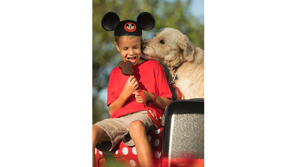 Dog Friendly Hotels at Walt Disney World