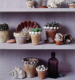 sea-shell-pots.jpg
