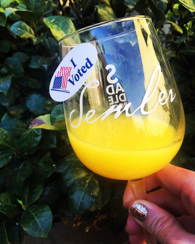 The votes are in! . . We need more wine (or Mimosas) to get through this presidential election. . . . pc:: @redheadofthesea . . #rockthevote #vote #election #president #election2016 #wevotedwine #wine #winenot #morewineplease