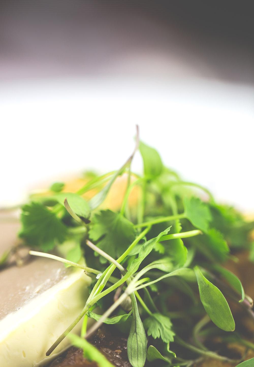 Greens Catering-105.jpg