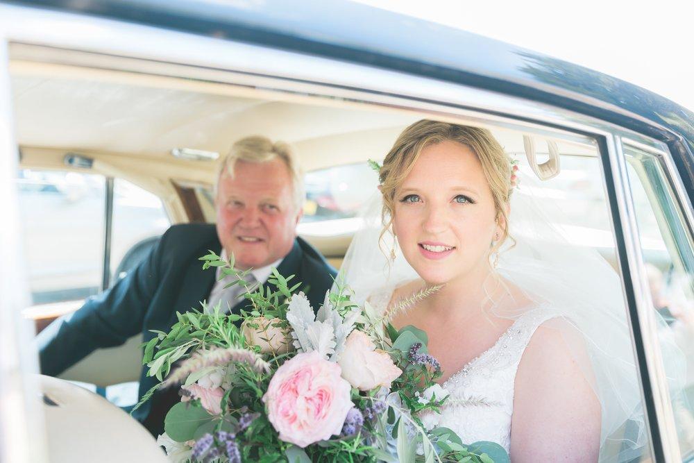 Bridesdogood11.jpg